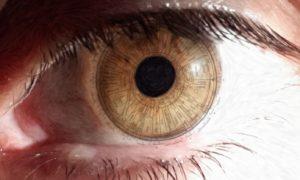 Venez découvrir l'iridologie au magasin l'Eau Vive à Meylan